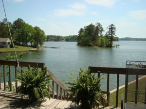 71 Foxglove in River Oaks on Lake Martin Alabama